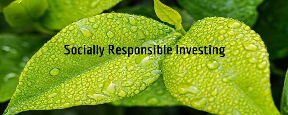 Calvert Socially Responsible Index Mutual Funds