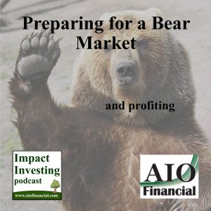 preparing for a Bear market and profiting